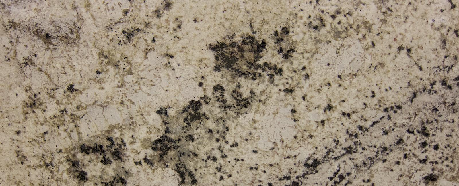 Granite Marva Marble And Granite